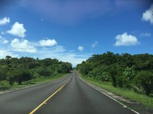 パラオの道